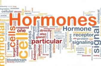 hormones (1)